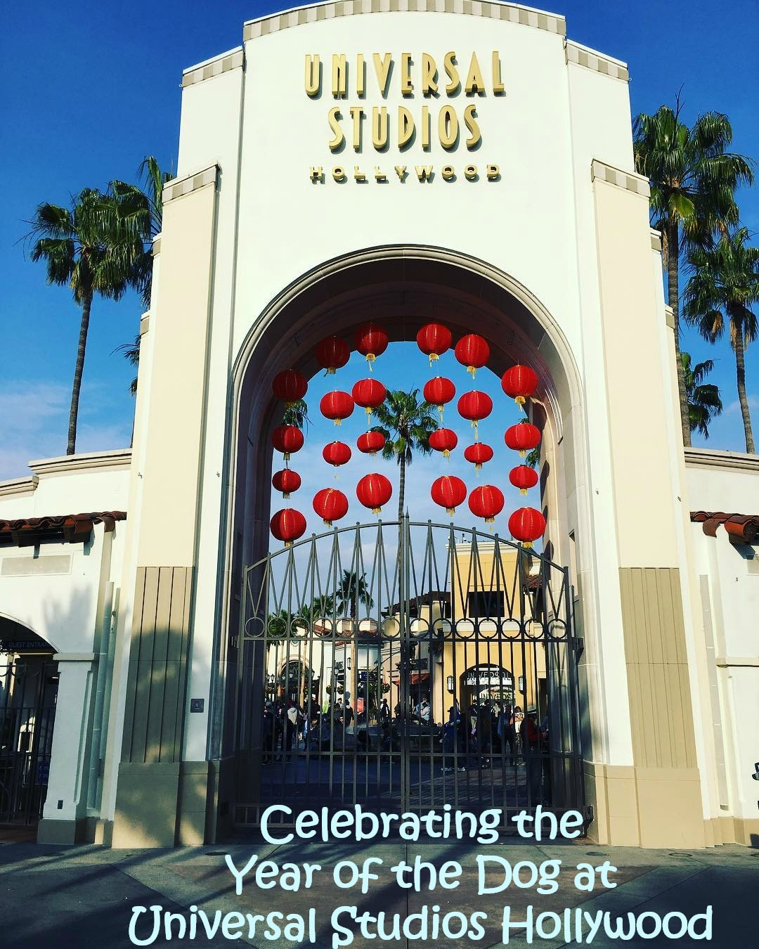 Celebrating the Year of the Dog at Universal Studios Hollywood