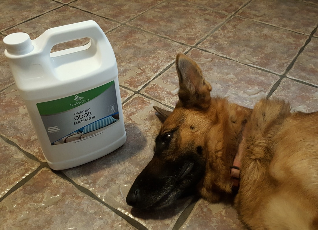 Getting rid of pet odors with EnviroKlenz