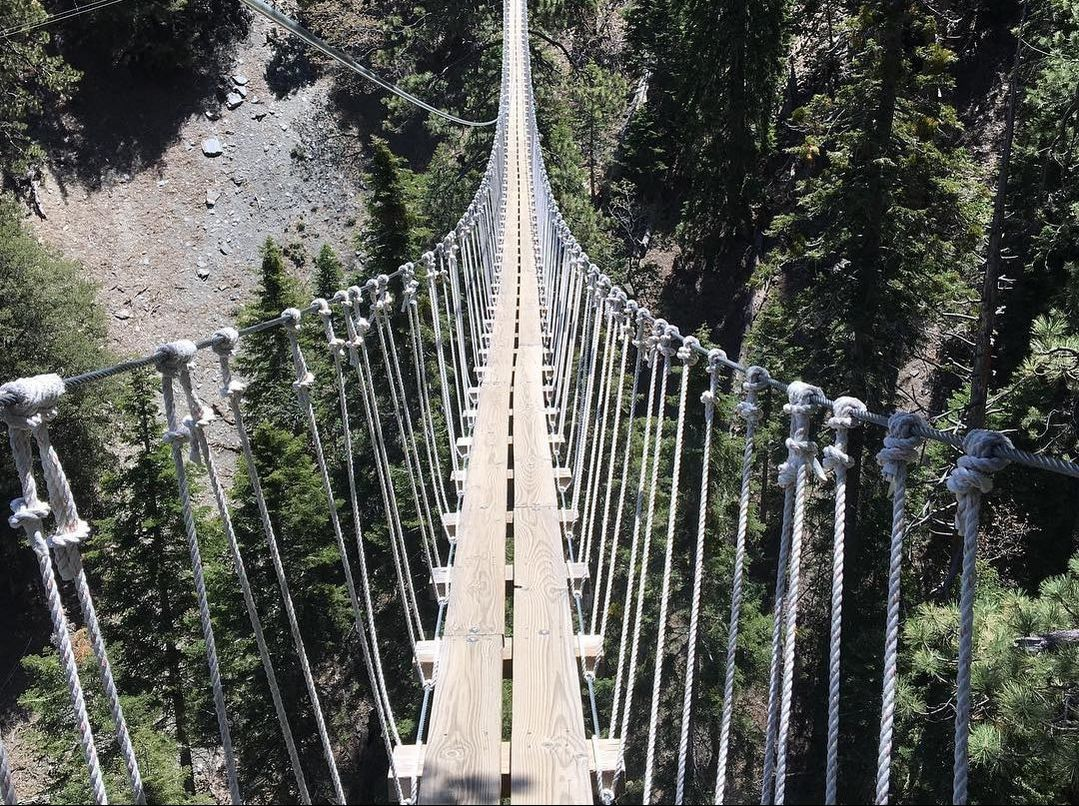 Hanging bridge Ziplines Pacific Crest